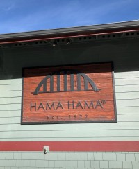 A beautiful sunny day at the Hama Hama Oyster Saloon