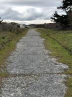 Old access road near the main beach bunker. Spooky.