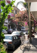 Beautiful, floral-lined streets