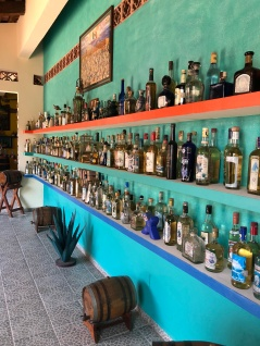 A very LARGE collection of tequila!