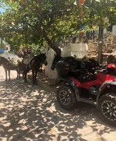Two of the three modes of transportation in Yelapa