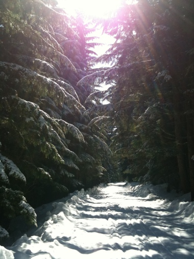 Snowshoeing on the Nordic trails at Snoqualmie ski are