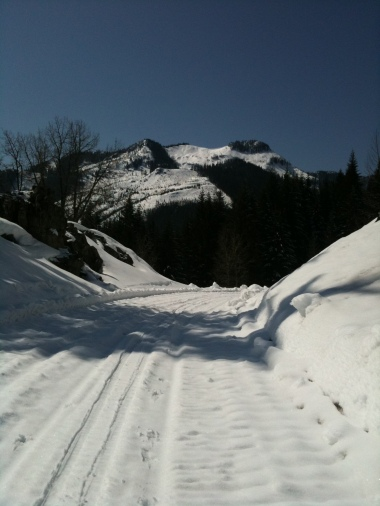 Great snowshoeing and snowmobiling near the Pass