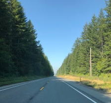 A good day for a Clallam County drive...