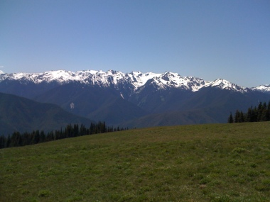 Gorgeous Hurricane Ridge