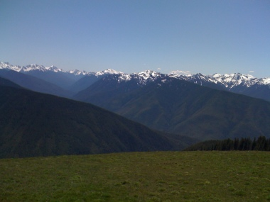 Clear skies and beautiful green meadows at Hurricane Ridge