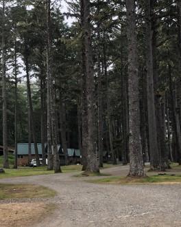 Quileute1
