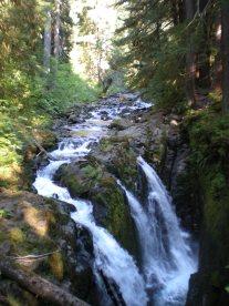 Beautiful Sol Duc Falls