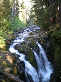 Beautiful Sol Duc Falls