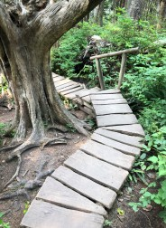 Part of the handy walkway down to Cape Flattery
