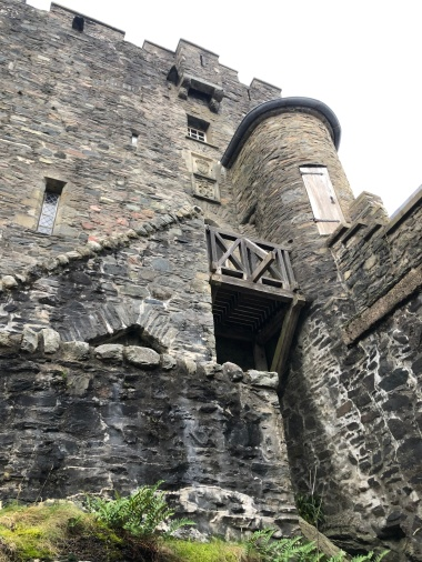 Looking up to the castle walls