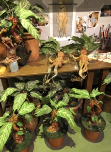 Put your earmuffs on around the mandrake roots!