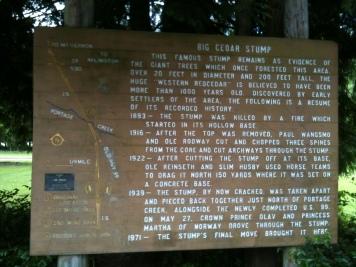 The Big Cedar Stump timeline