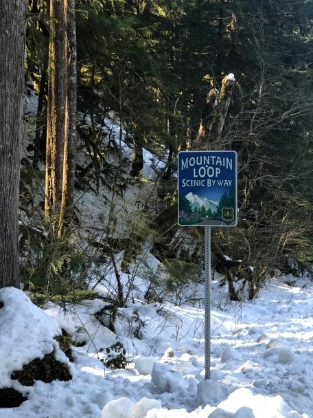 Mt Loop Highway