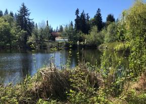 Near Scriber Lake and Scriber Creek