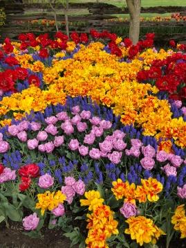 Flower overload!