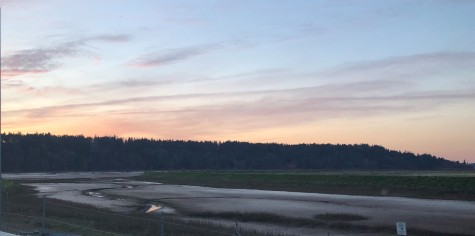 The Nisqually River Delta - where the Nisqually flows into the Puget Sound