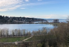 Sweeping view from the Capitol grounds of Capitol Lake, Heritage Park and Budd Inlett