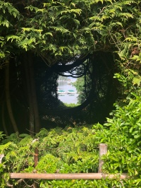 A hidden portal looking out to the water