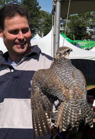 A beautiful falcon close up!