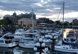 All the lights are turning on near the Inner Harbour