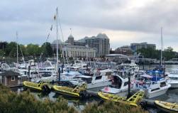Dusk at the Inner Harbour
