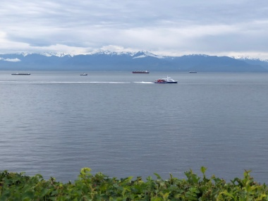 Watching the Victoria Clipper sail towards the Inner Harbour