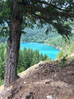 Amazing views of Diablo Lake from the Diablo Overlook