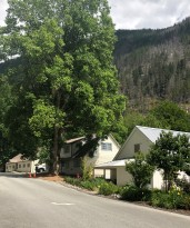 The sleepy streets of Newhalem