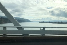Looking out over the Columbia from the Julia Butler Hansen Bridge