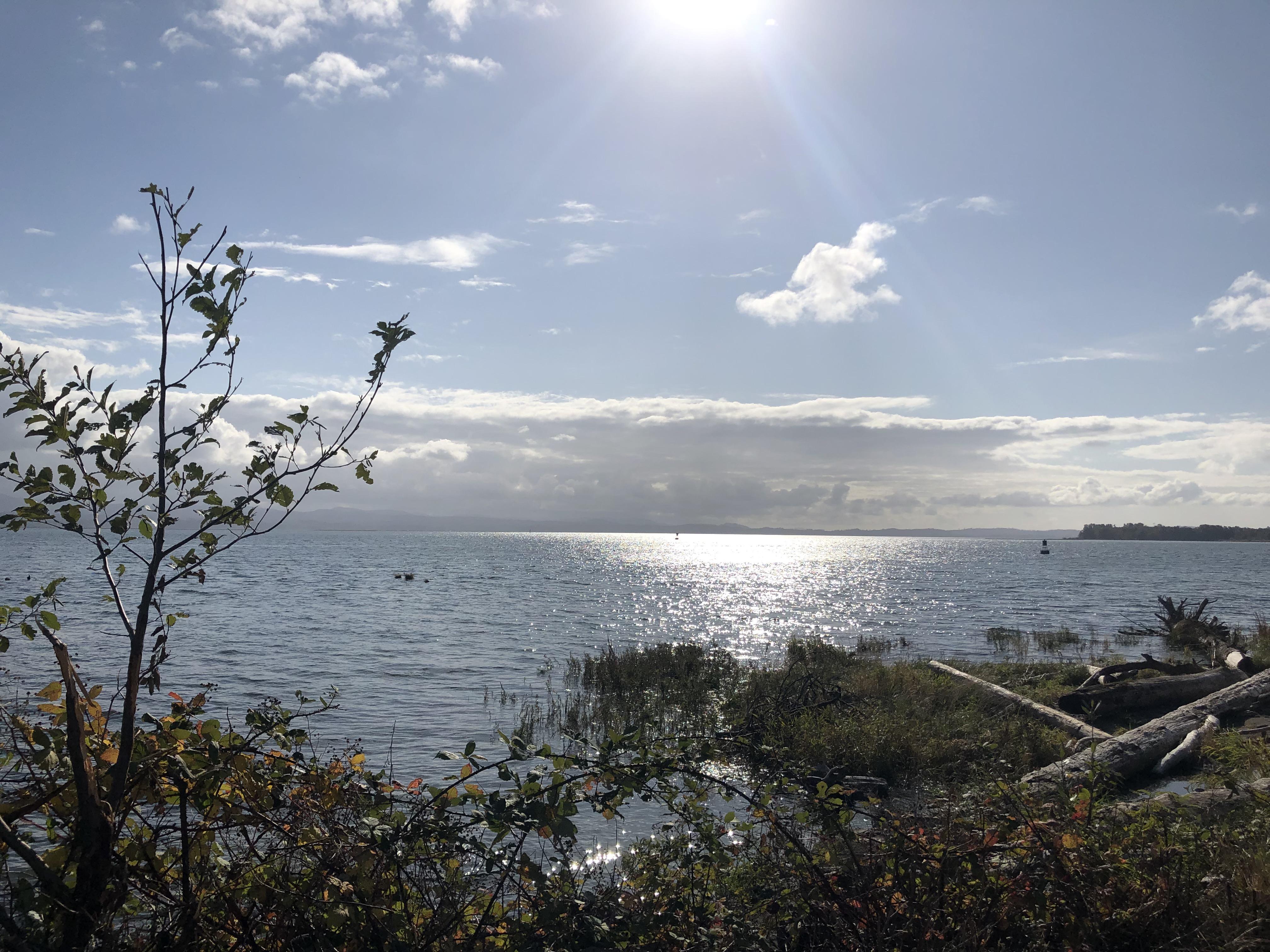 Altoona View