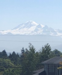 Beautiful Mount Baker as seen from my Ragnar run through Ferndale