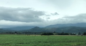 The Lynden and Sumas areas are surrounded by gorgeous backroads and farmland