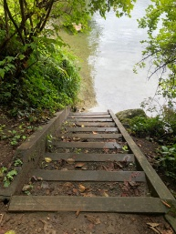 Steps leading directly into Lake Samish