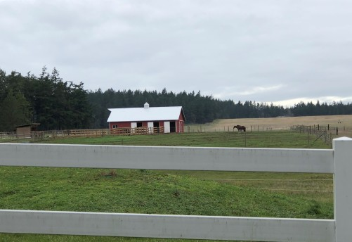 Pastoral scenes outside of Oak Harbor