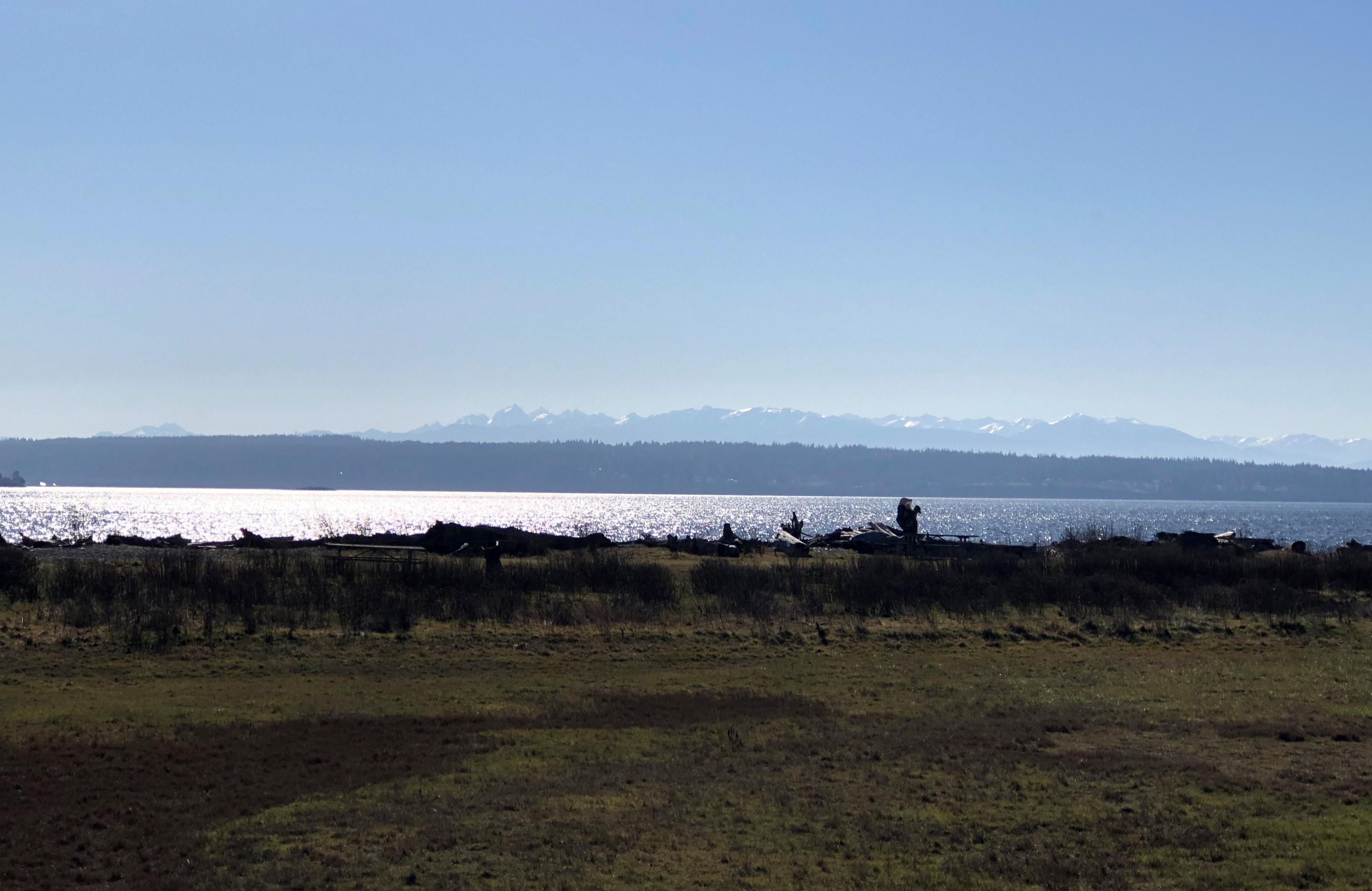 Cama View