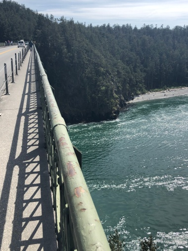 That's a long way down! Looking over to the Island County portion of Deception Pass State Park.