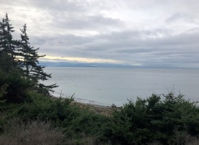 Looking out from a trail at Fort Ebey State Park