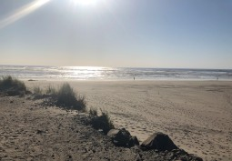 Beautiful Benson Beach from the North Jetty