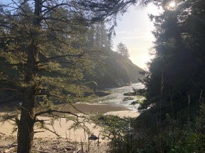 A beautiful view of Deadman's Cove from the trail