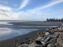 Sandy beaches in North Cove