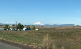 And there's Mt. Hood!